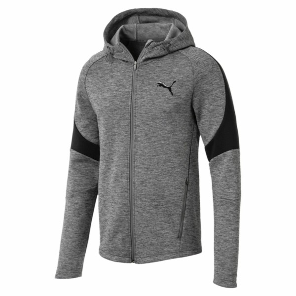 кофта Puma Men's Fall Evostripe FZ Jacket (851722-03)